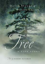 tree_a_life_story_image
