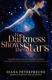 for_darkness_shows_the_stars_image