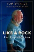 like a rock image